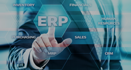 Image:ERP system implementation, operations, and operational support