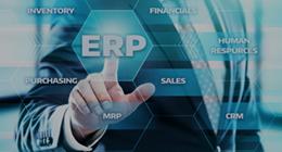 画像:ERPシステム導入・定着化・運用支援